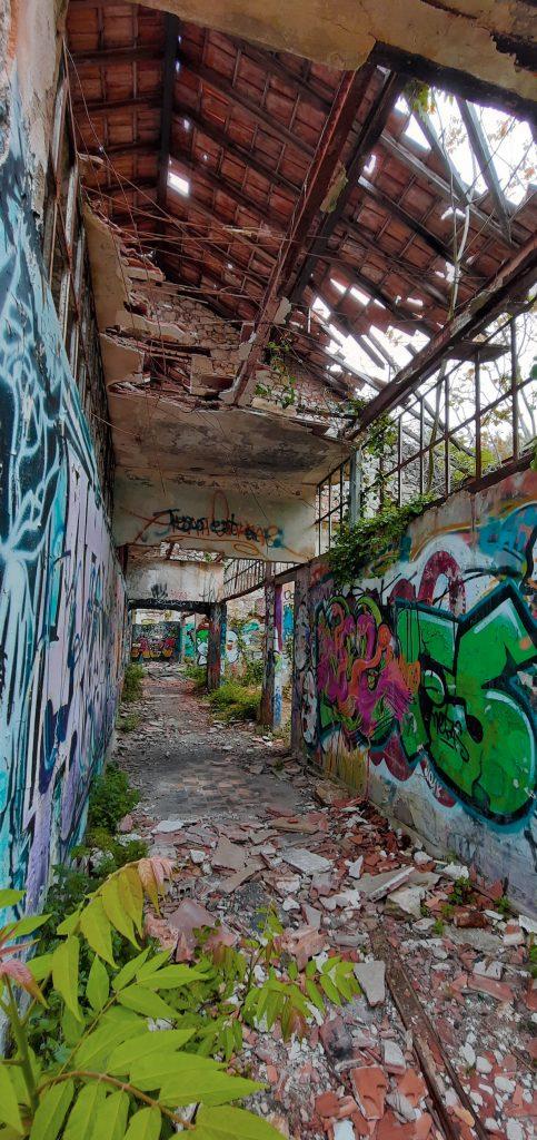 photo du fort abandonné de la tête de chien à Monaco